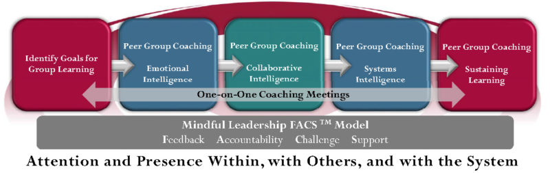 Microsoft Word - Peer group Coaching Graphic 2