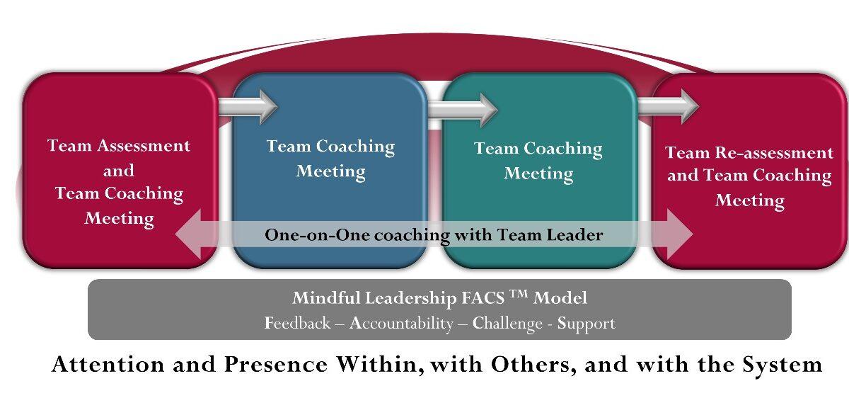 Team Coaching workflow