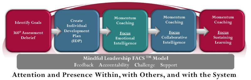 momentum-coaching-2